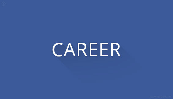 Career Opportunities for web designers