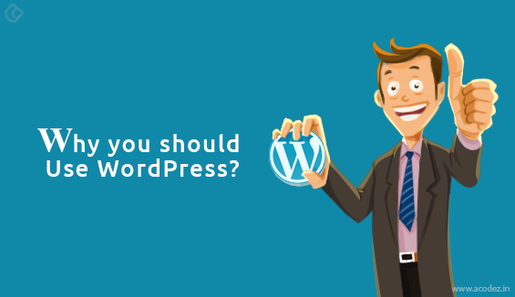 25 Top Advantages of using WordPress for Your Website