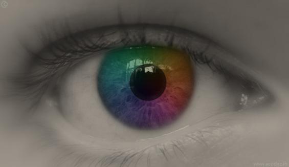 Missing the retina screen