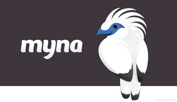 wireframe design tool - myna