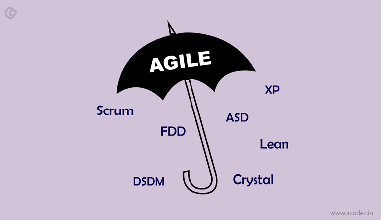 Types of Agile Development