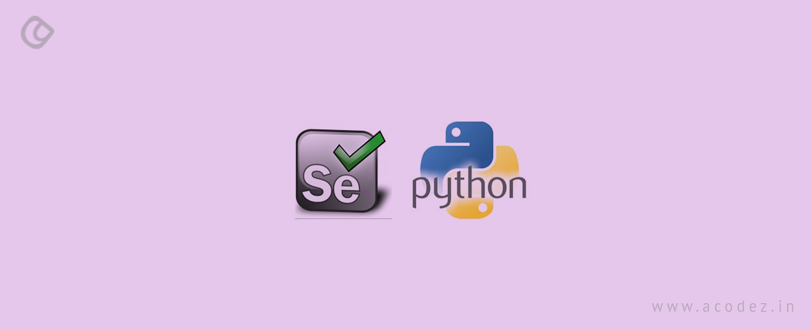Web Automation with Selenium and Python: The Ultimate Guide