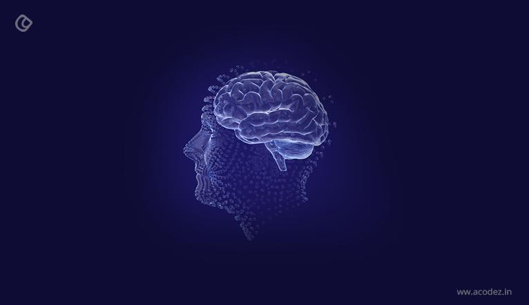 Immunity and Brains