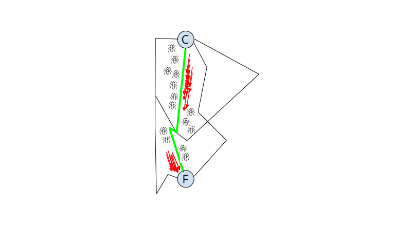 ant colony algorithm shortest path