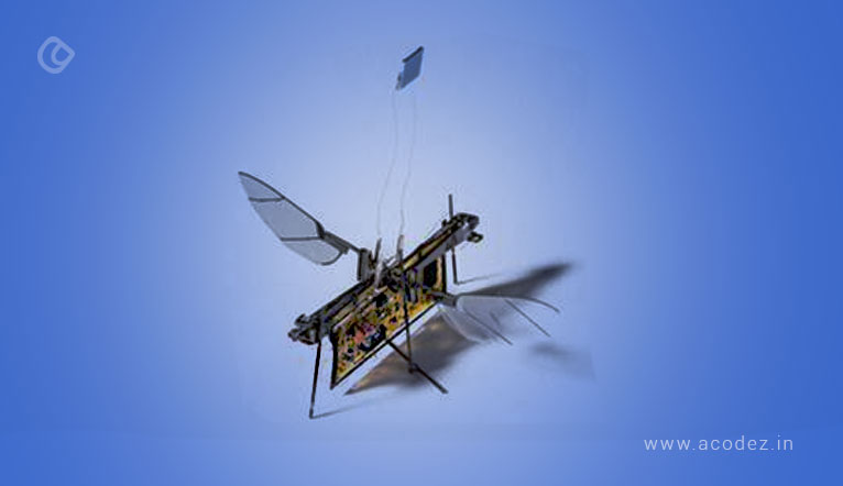 robofly-one-of-the-most-realistic-robotic-insect