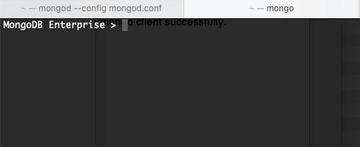 chevon-prompt-of-mongodb