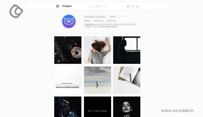 creating-an-instagram-feed-theme