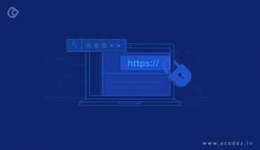 Web Application Vulnerabilities and Control