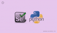 Web automation with python and selenium